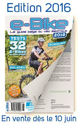 banner ebike_250x400